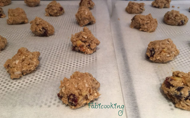Cookies-sans-gluten-cranberries1
