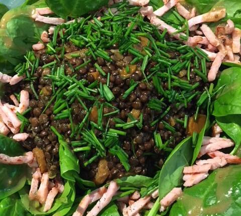 Salade de lentilles et pousses d'épinard