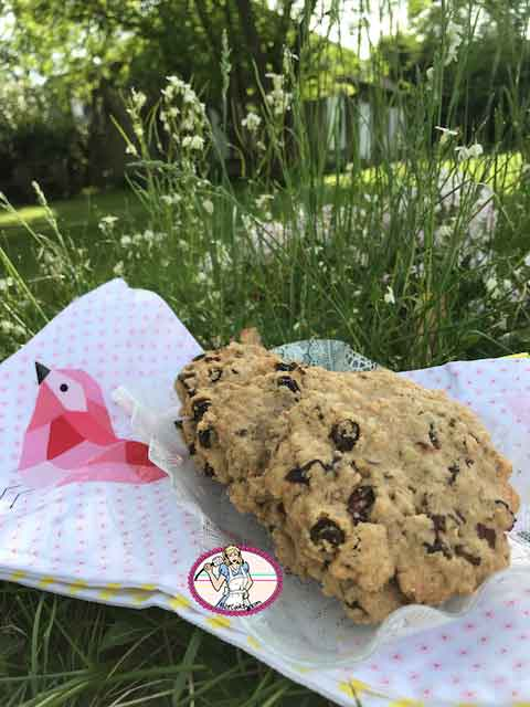 Cookies aux raisins secs, décan et flocons d'avoine de Laura Todd's